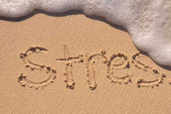 http://www.psicologiazaragoza.es/blog/wp-content/uploads/2017/09/stress.jpg
